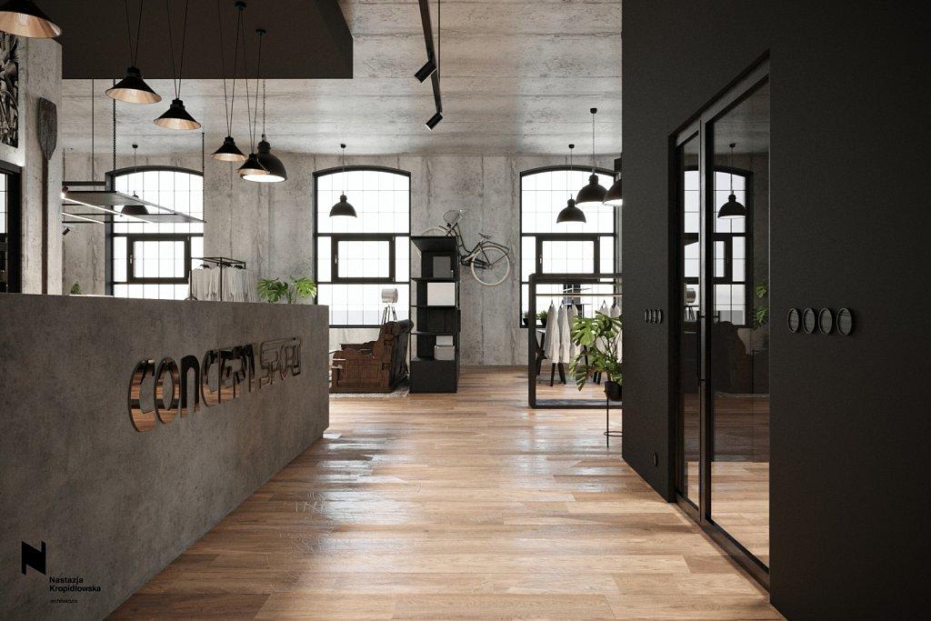 nastazja-kropidlowska-architektura-wnetrz-biuro-dowborczykow-lodz18.jpg