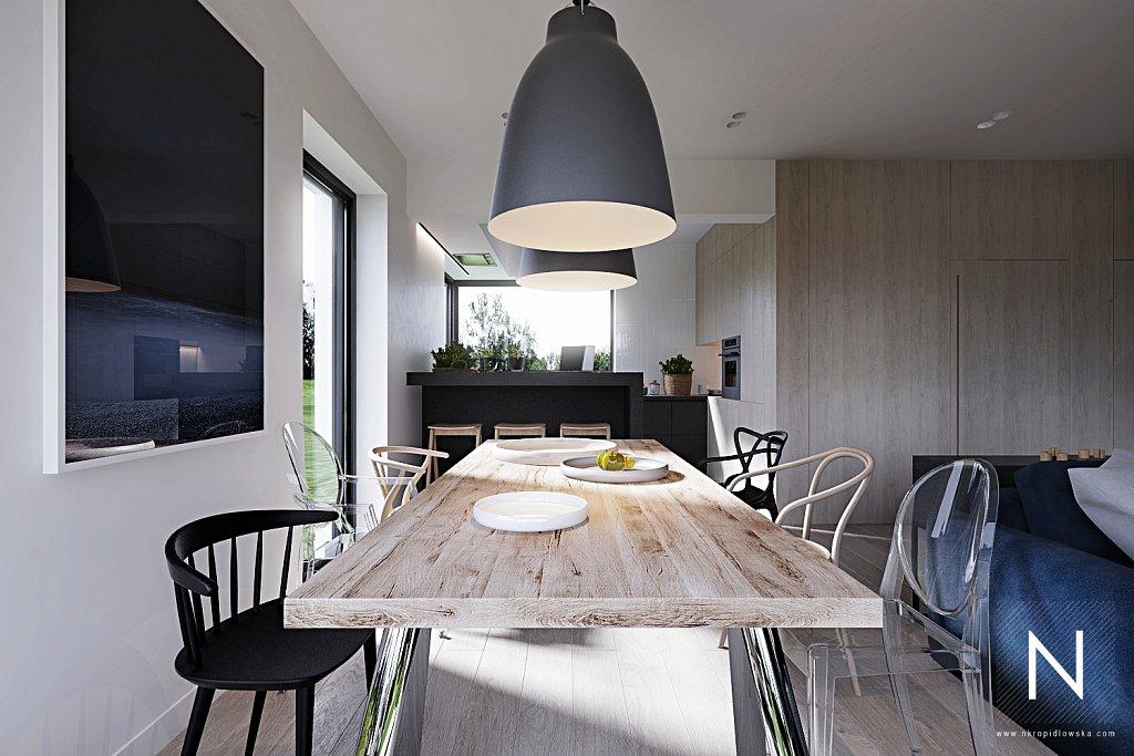 nastazja-kropidlowska-architektura-wnetrz-dom-zlotno-park-lodz-architekt-wnetrzaparter-zlotno-View05.jpg