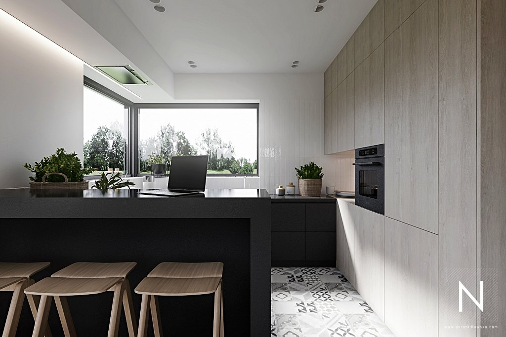 nastazja-kropidlowska-architektura-wnetrz-dom-zlotno-park-lodz-architekt-wnetrzaparter-zlotno-View06.jpg