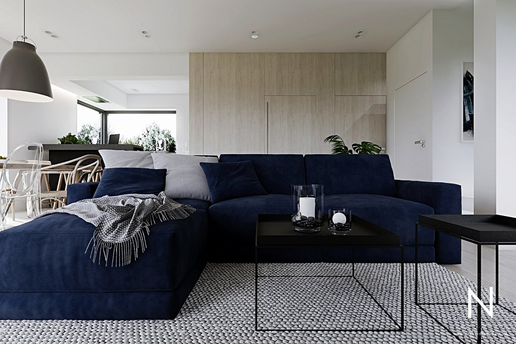 nastazja-kropidlowska-architektura-wnetrz-dom-zlotno-park-lodz-architekt-wnetrzaparter-zlotno-View18.jpg